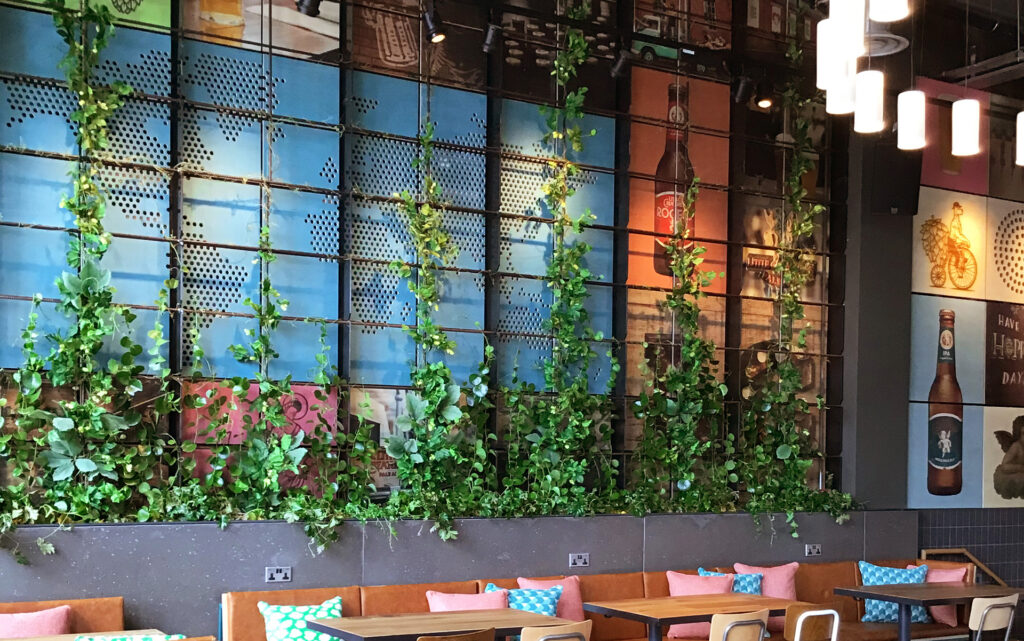 little Creatures feature wall panels