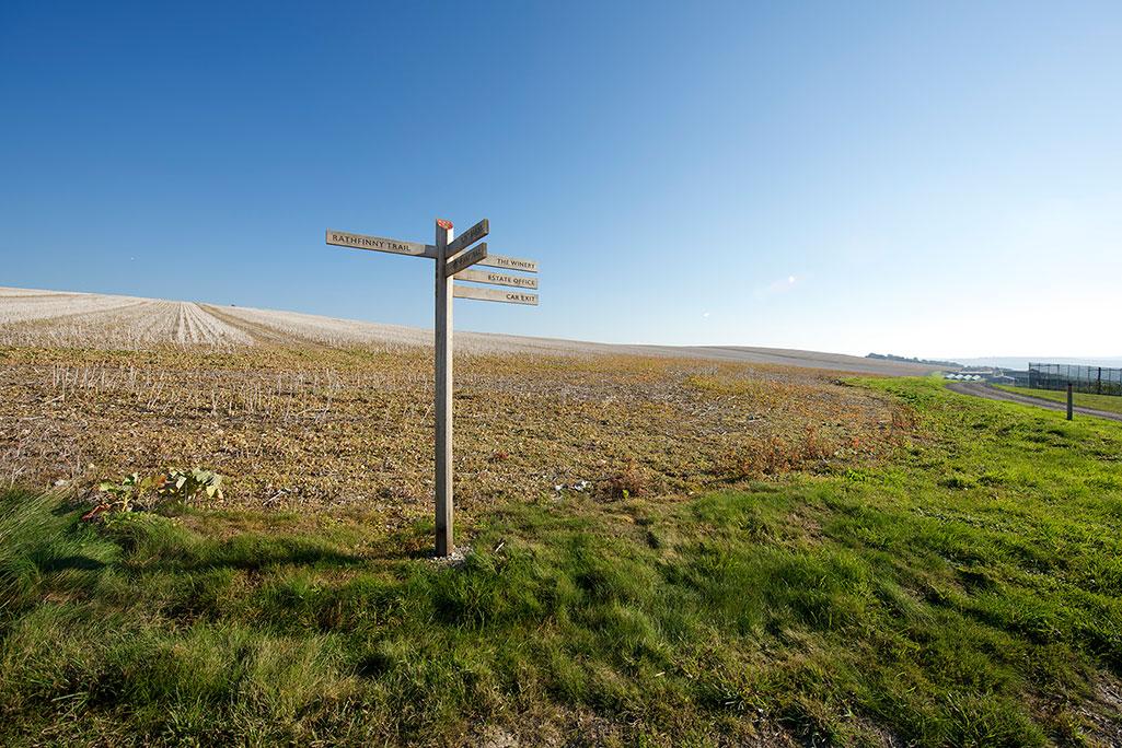 Rathfinny branding Wine Estate Oak Fingerpost Signage in Sussex downs